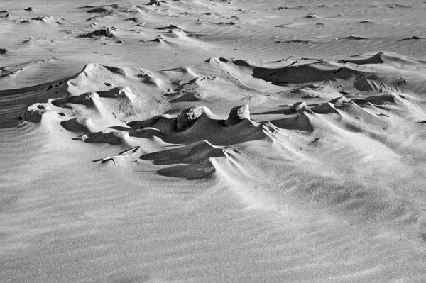 Dunes #21
