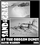 Sand and Grass: Oregon Dunes