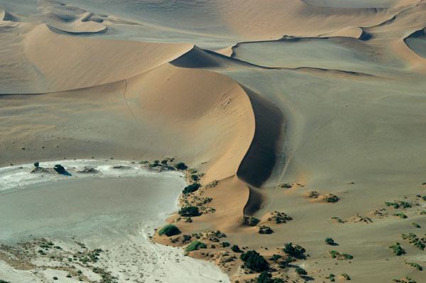 The dune we climbed at Sossusvlei
