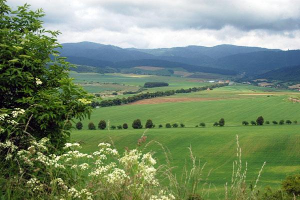 Farmland around Spiš Castle