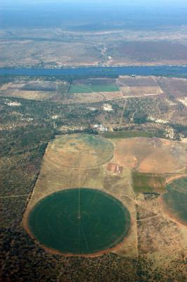 Irrigated fields along the Zambezi, Zambia