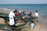 Indian Ocean net fishermen, UAE