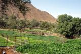 Agriculture, Madhah