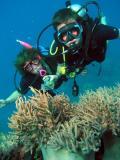 Thetford Reef (Cairns)