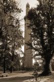 Minaret in Grenoble, France