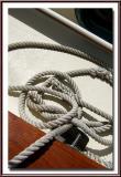 August 8, 2005  Untidy Seamanship