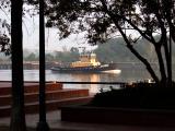 Savannah October 2005