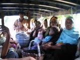 Local Bus ride