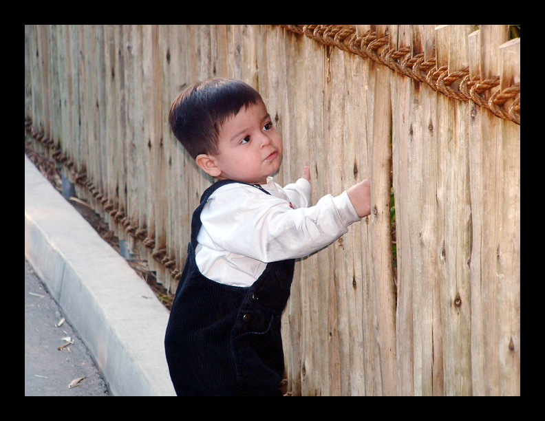 Angel at the fence.