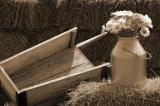Rustic Still Life in Sepia