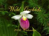 Wall Calendar for 2006
