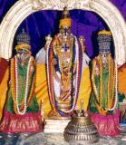 vasanthotsavam2005