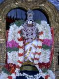 Nathamunigal on Aani anusham