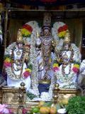 tanga-c-chapparam