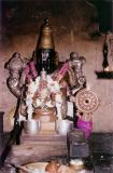 Kanchi Narasimhar