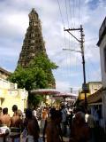 Ythothakari emperuman and Thiruvellukai emperuman at the backdrop of Varadar gopuram