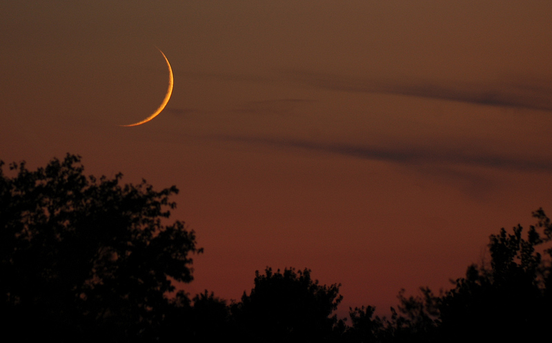 September Crescent