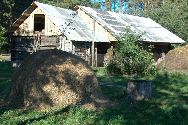 The Farm Today -- Ûkis ðiandien