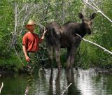 Finding Moose Right