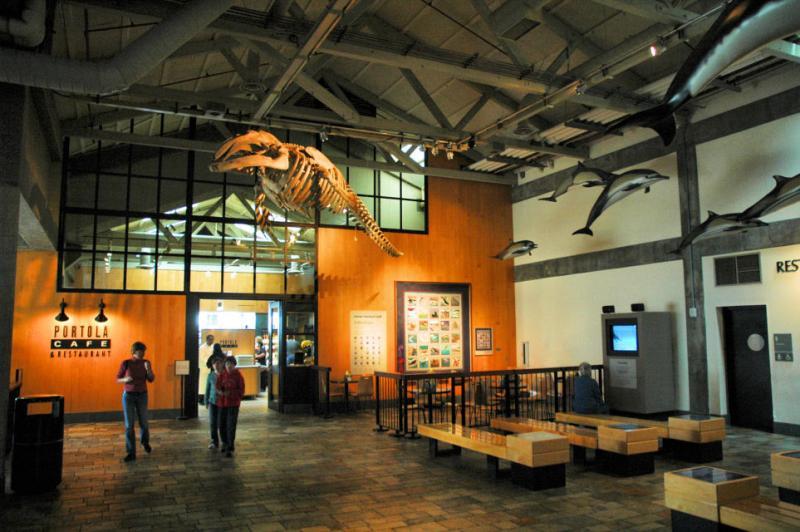 Monterey Bay Aquarium Interior