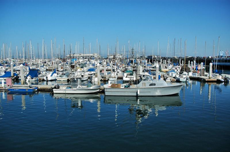 Monterey Bay Harbor boats