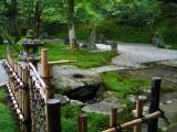 Contemplative moss and rock garden