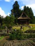 Modest family's farmhouse