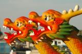 Dragon Boat Tournament