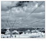 Landscape with line of electricity transmission