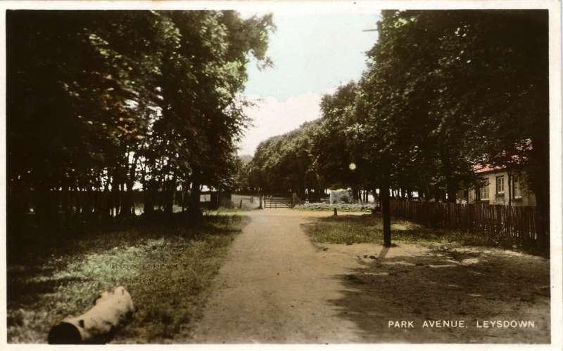 Park Avenue, Leysdown