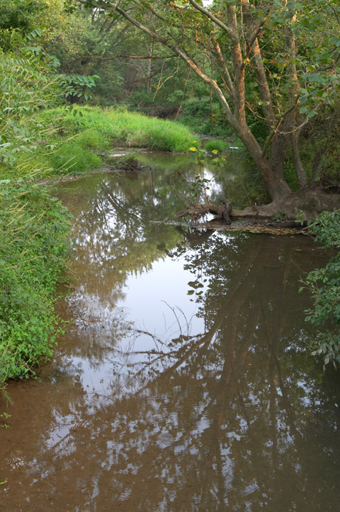 Ballenger Creek.jpg