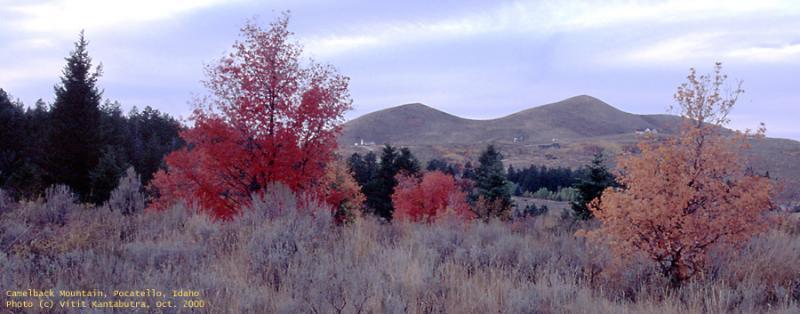 Camelback Mountain Pocatello in Autumn.jpg