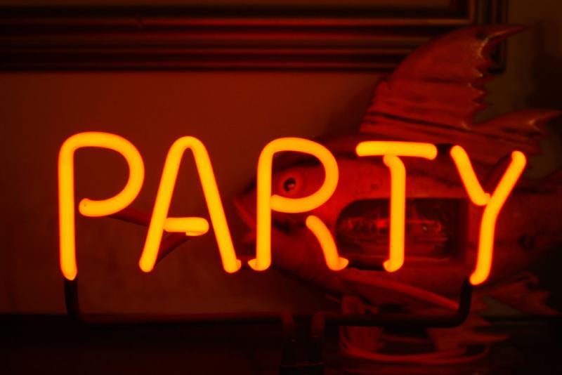 stuffles party lights DSCF0060.jpg