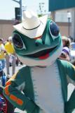Western Kermit DSCF0017.JPG