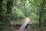 City Creek Trail DSCF0073.JPG
