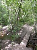 City Creek Trail DSCN6404.JPG
