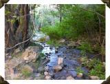 Stream near Heise Idaho smallfile DSCN6493.jpg
