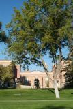 Graveley Hall Idaho State University smallfile DSCF0047.JPG
