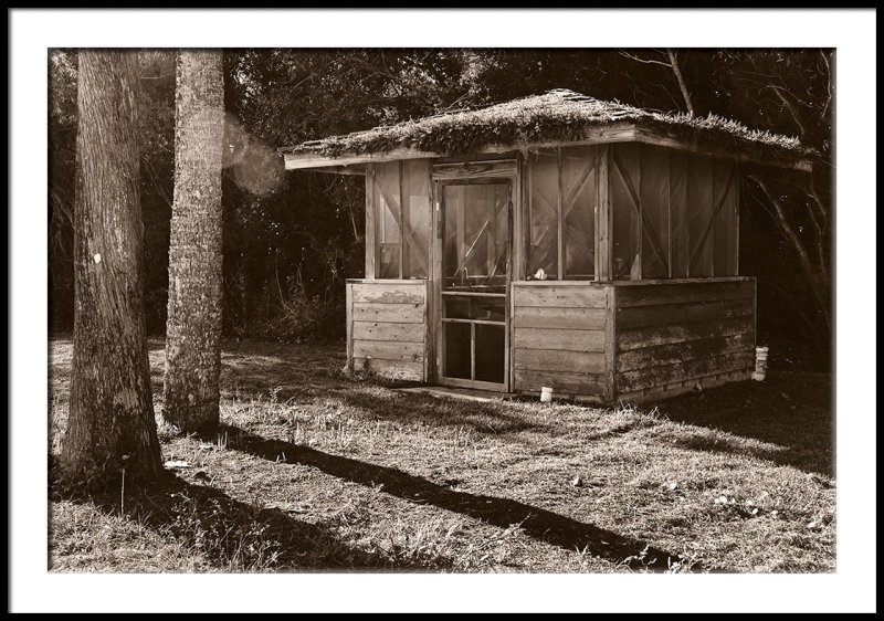 Hut with Roof Moss