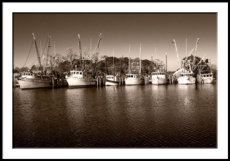 Shrimp Fleet