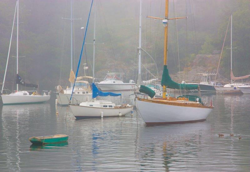 Foggy Perkins Cove         # 0137