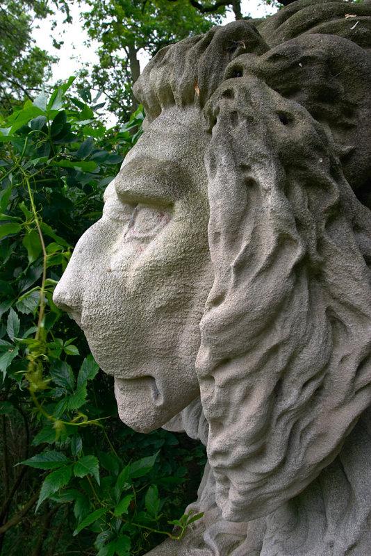 lion3.jpg