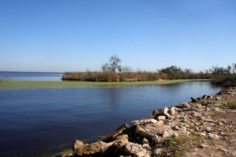 Where Bayou LaBranche flows into Lake Pontchartrain