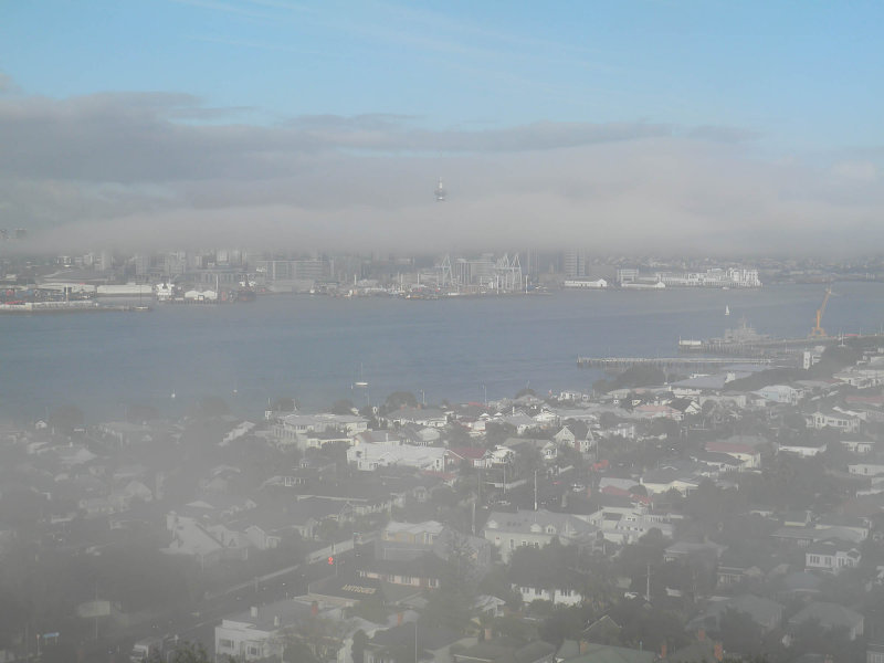 Fog 4.jpg