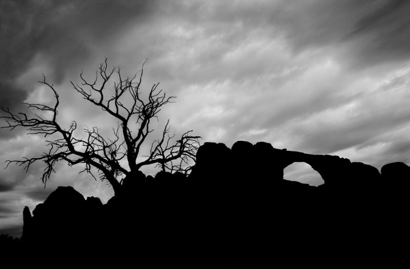 Silhouette-Arches National Park