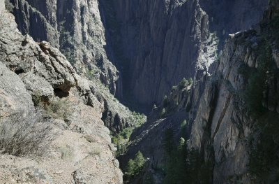 Dark Canyon At The Gunnison
