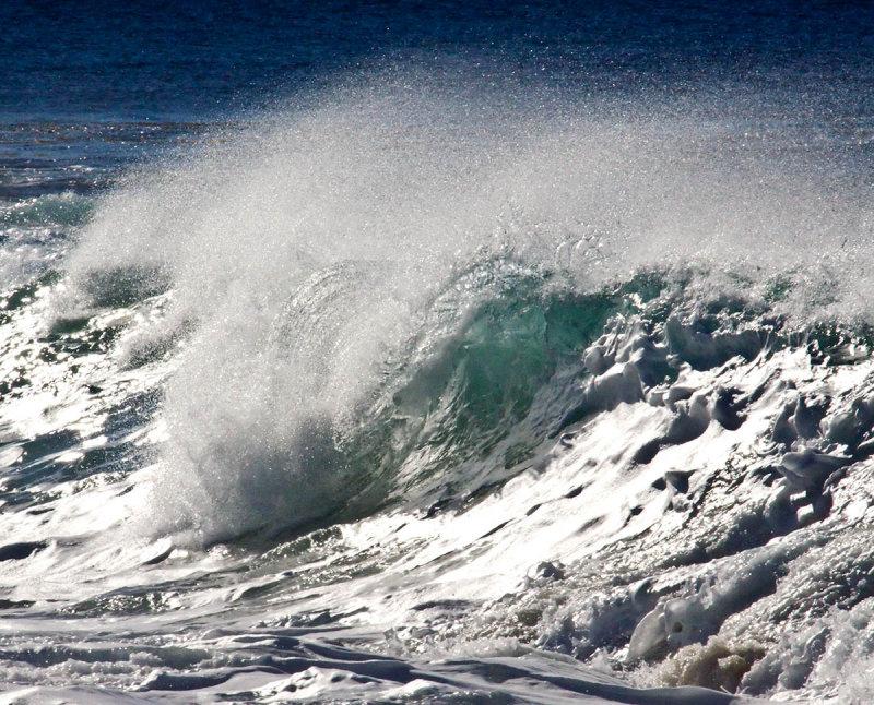 Tube no surfer _MG_9820.jpg