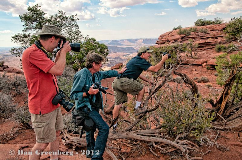 How Many Photographers Does It Take to Photograph a Lizard?