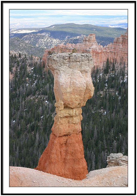 Pillars of Bryce