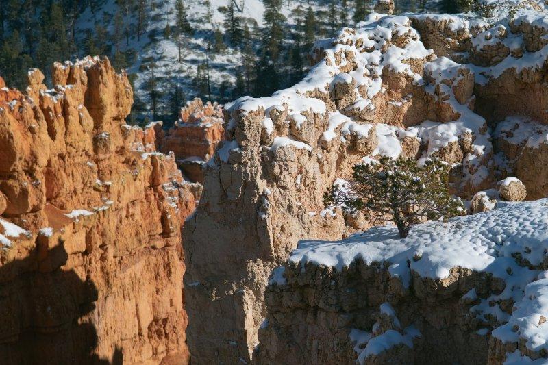 One Tree Ridge